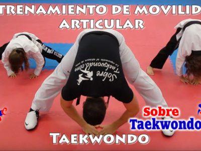 La movilidad, flexibilidad y elasticidad en el Taekwondo. Sistema de ejercicios para mejorar esta capacidad
