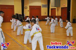 La clase de Taekwondo