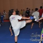 La enseñanza programada de las técnicas en el Taekwondo
