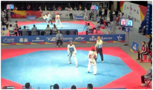 Áreas octagonales de competencia en Taekwondo.
