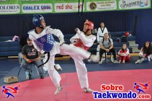 Truescore Taekwondo Nov 2016