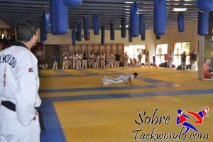 Organizacion preparación física de taekwondo