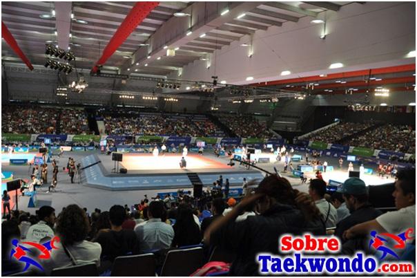 áreas de combate Taekwondo