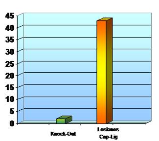 Grafico lesiones KO