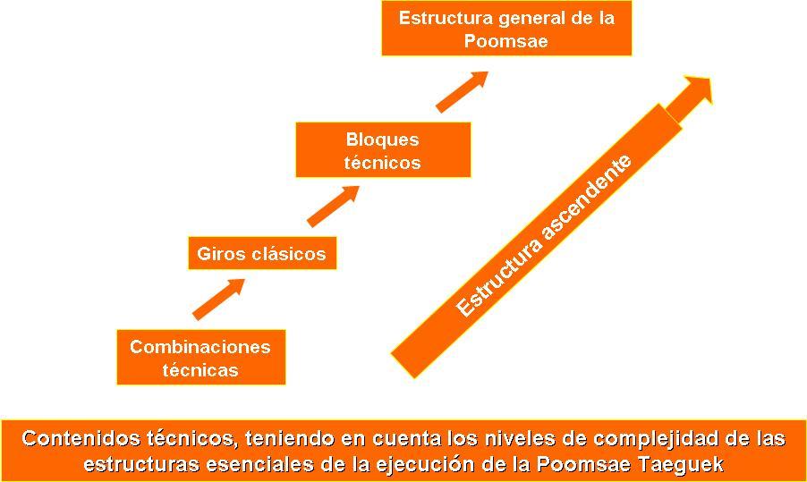 Estructura general de las formas