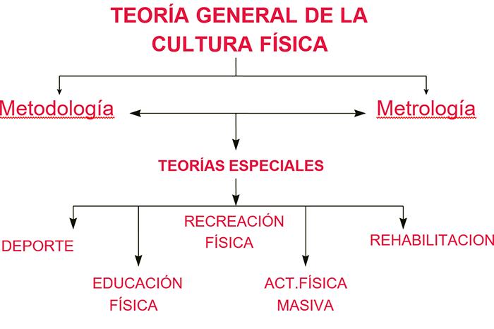 La teoría de la cultura física