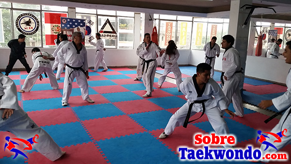 fundamentos técnico táctico del combate de taekwondo
