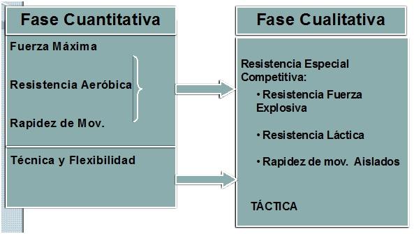 orientación sobre algunas direcciones desarrolladas en ambas fases.