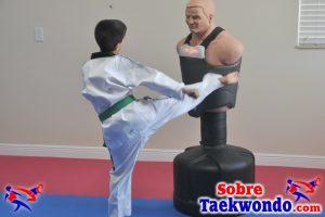 Juegos de Taekwondo para las capacidades físicas en niños.