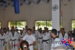 Master Taekwondo 529