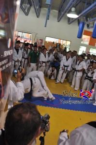 Master Taekwondo 531