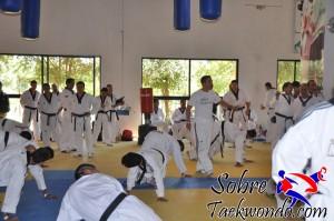 Master Taekwondo 532