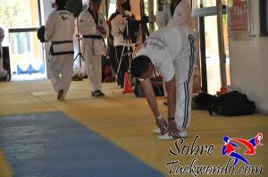 Master Taekwondo 533
