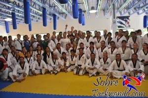 Master Taekwondo 536