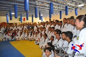 Master Taekwondo 539