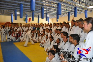 Master Taekwondo 540
