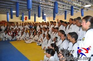 Master Taekwondo 541