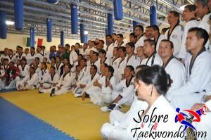 Master Taekwondo 542
