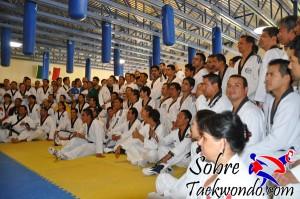 Master Taekwondo 543