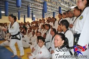 Master Taekwondo 544
