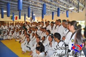 Master Taekwondo 546