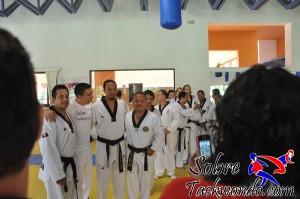 Master Taekwondo 565