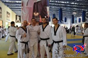 Master Taekwondo 582