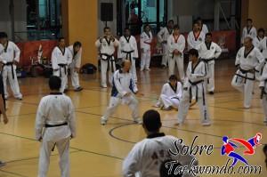 Master Taekwondo 588