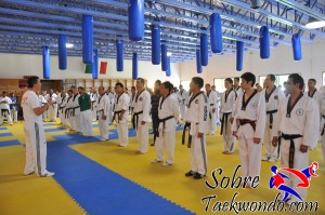 Master Internacional de Taekwondo