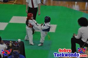 AAU Taekwondo Florida 2017 340