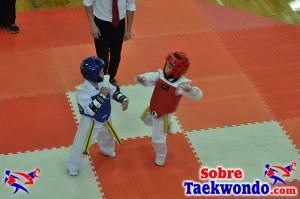 AAU Taekwondo Florida 2017 343