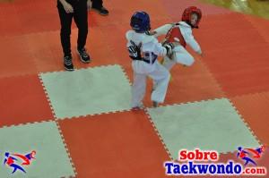 AAU Taekwondo Florida 2017 349