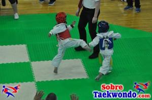AAU Taekwondo Florida 2017 379