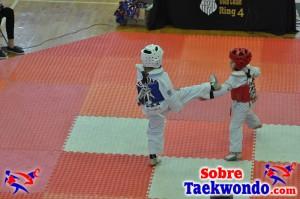 AAU Taekwondo Florida 2017 399