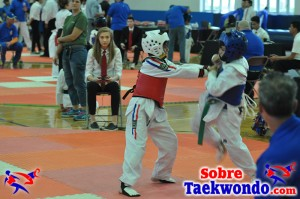 AAU Taekwondo Florida 2017 417