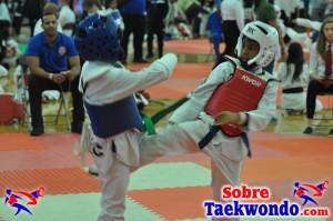 AAU Taekwondo Florida 2017 418