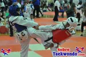 AAU Taekwondo Florida 2017 419