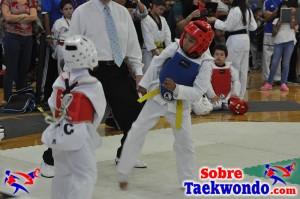 AAU Taekwondo Florida 2017 428