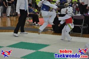 AAU Taekwondo Florida 2017 433