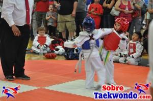 AAU Taekwondo Florida 2017 436