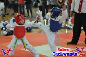 AAU Taekwondo Florida 2017 437