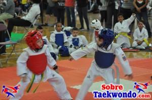 AAU Taekwondo Florida 2017 438