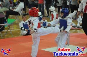 AAU Taekwondo Florida 2017 439