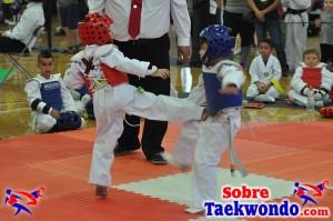 AAU Taekwondo Florida 2017 444