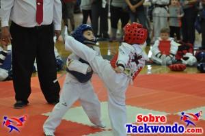 AAU Taekwondo Florida 2017 446