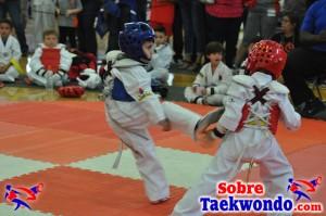 AAU Taekwondo Florida 2017 449