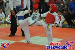 AAU Taekwondo Florida 2017 453