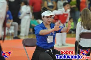 AAU Taekwondo Florida 2017 459