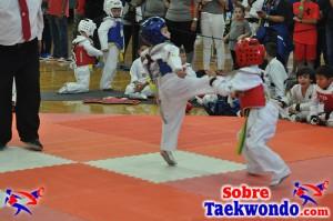 AAU Taekwondo Florida 2017 463