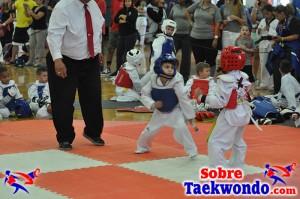 AAU Taekwondo Florida 2017 467